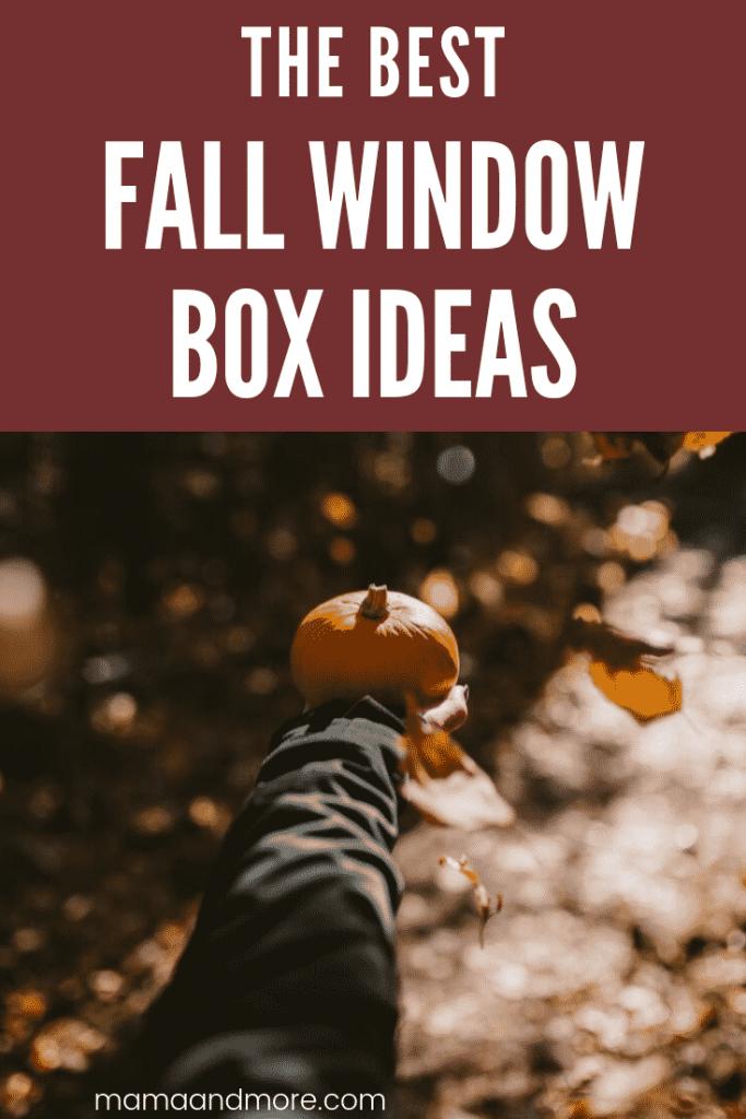 The best Fall window box ideas.