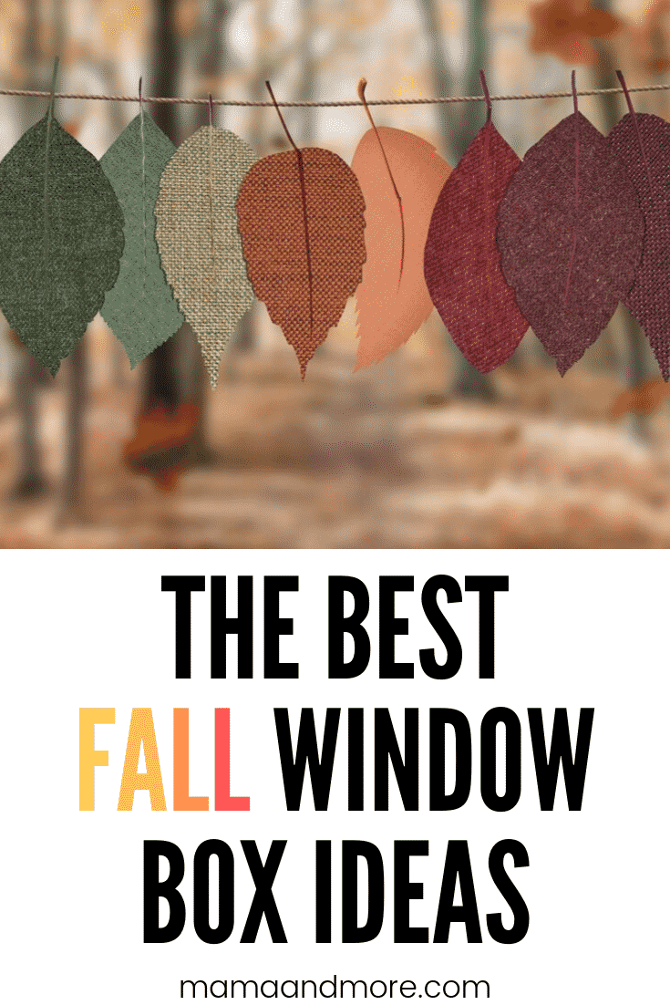 The best and easiest Fall window box ideas