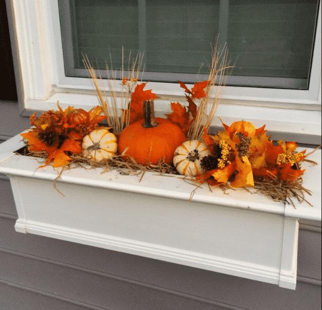 Best Fall window box ideas