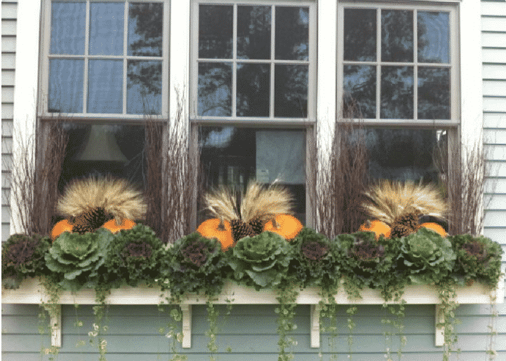 The best ideas to decorate your window box for Fall