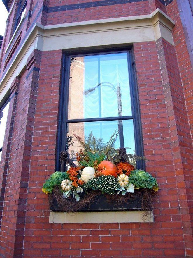 The most unique Fall window box ideas