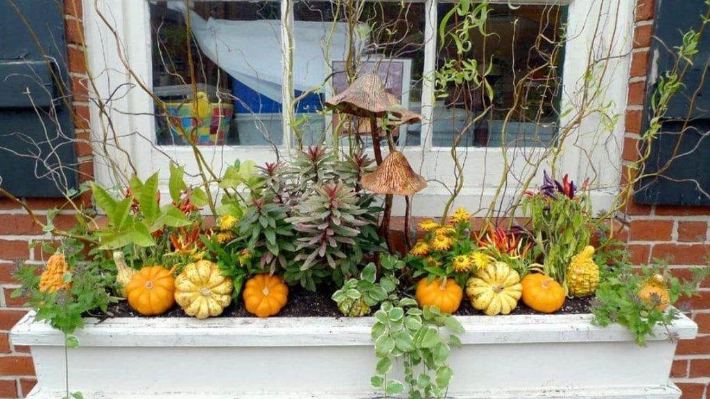 Unique Fall window box ideas!