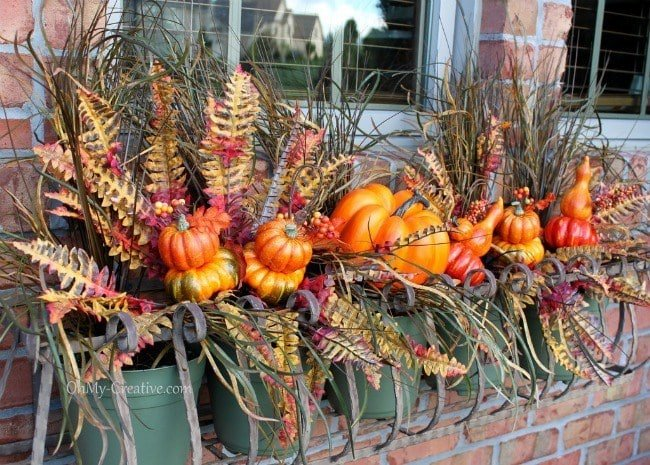 The best ideas for your window box in Fall.