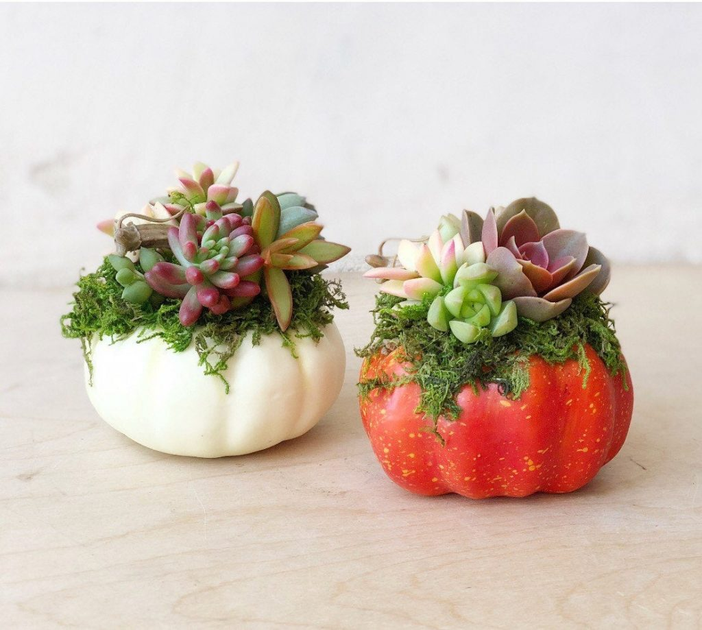 The best and most unique fall decor on Etsy!