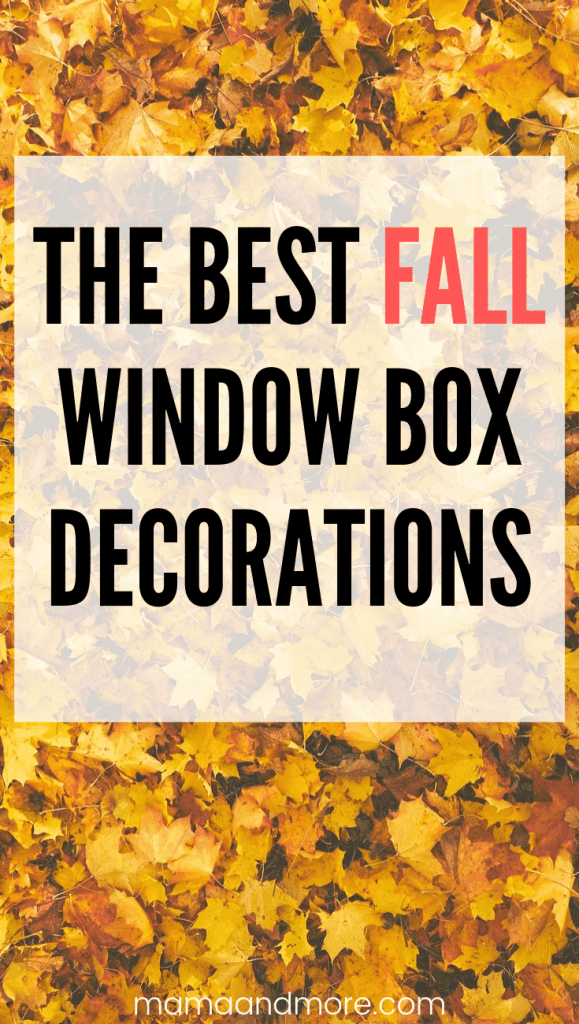 The best and easiest Fall window box ideas!